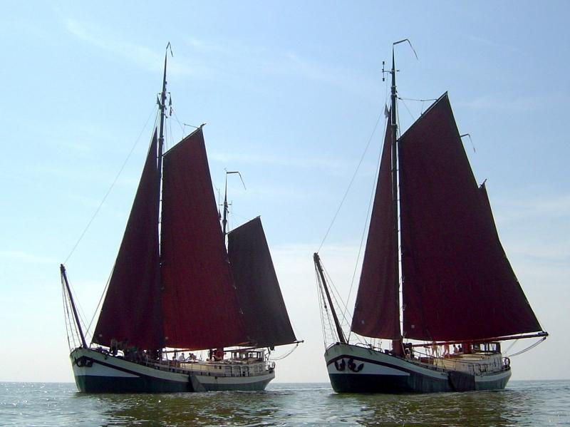 Friesland Charter